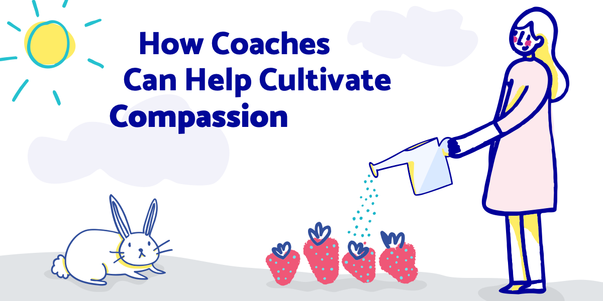 Header - Harding - Coaching with Compassion